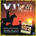 Mariachi Arriba Juarez