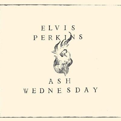 While You Were Sleeping - Elvis Perkins