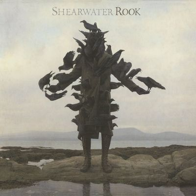 On The Death Of The Waters - Shearwater