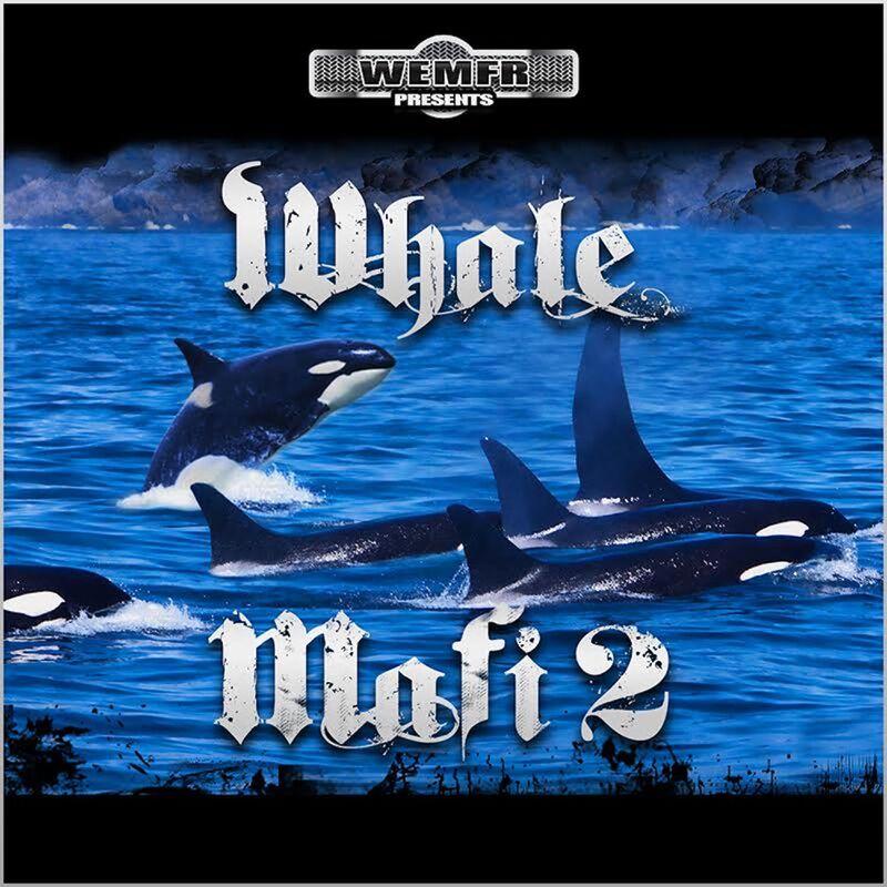 Whale Mafi 2