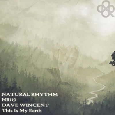 Rare (Original Mix) - Dave Wincent