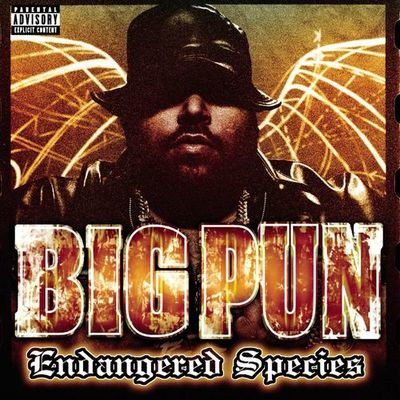 Brave In The Heart Big Pun featuring Terror Squad - Big Pun
