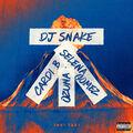 cover - Taki Taki (feat. SELENA GOMEZ, OZUNA, CARDI B), DJ SNAKE