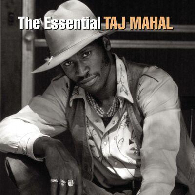 Johnny Too Bad - Taj Mahal