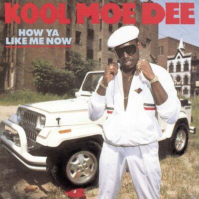 Wild Wild West - Kool Moe Dee