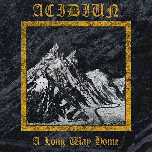 Acidiun - A Long Way Home [single] (2021)