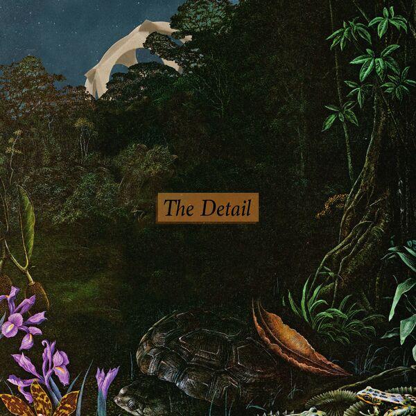 Delta Sleep - The Detail [single] (2021)