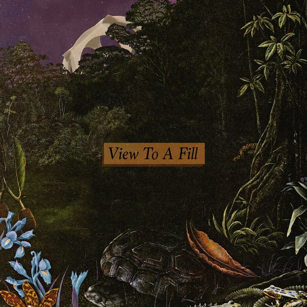 Delta Sleep - View to a Fill [single] (2021)